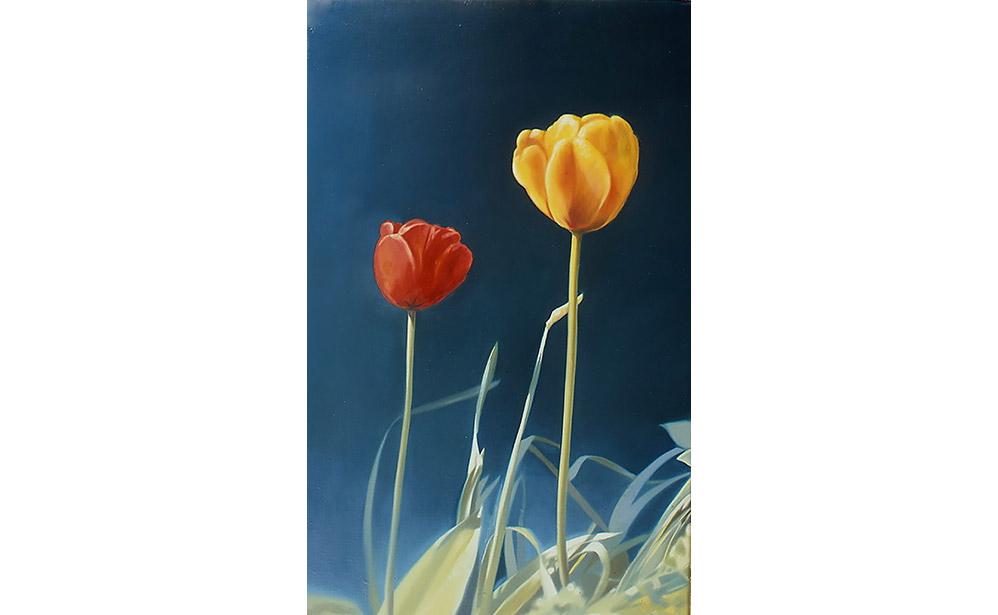 twee kleine tulpen III